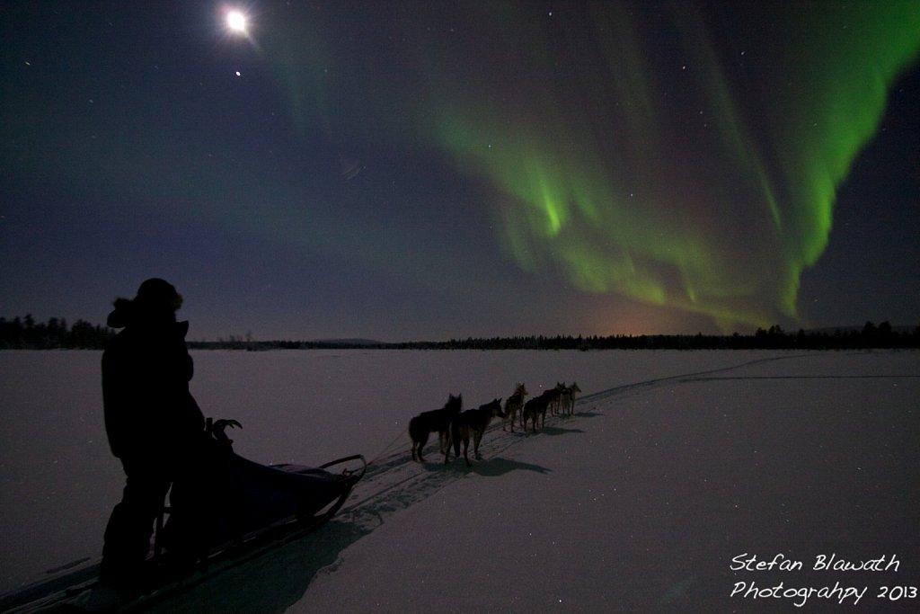 Eine Hundeteam und -führer geniessen den Anblick der Nordlichter